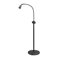 LumiRay LED Pedestal Floor Stand Light